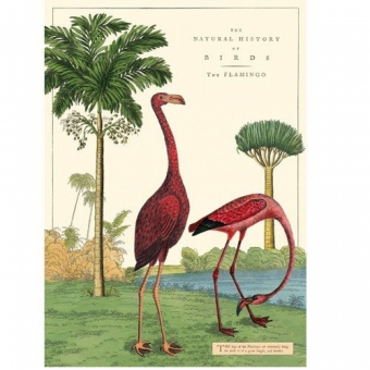 vintage poster Flamingo's Goed Gestyled Brielle